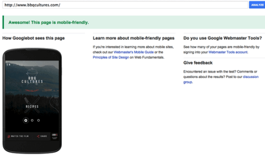 Photo: Google Mobile Friendly Test Tool